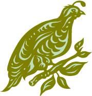 quail - quaglia